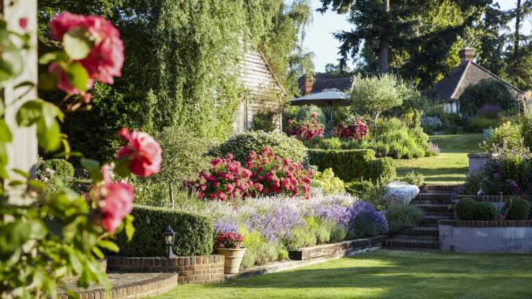 Claire Merriman Design -Lavender and Rose Garden - 05